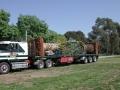 dscn0309-palm-on-truck