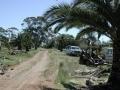 palm-world-work