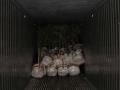 plantcontainer1promo